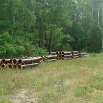 rury w lesie